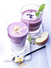 Wild Blueberry Coconut Smoothie Picture