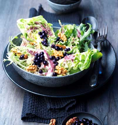 Wild Blueberry Walnut Salad Picture