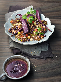 Lentil Salad with Wild Blueberry Dressing Picture