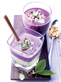 Wild Blueberry Banana Smoothie Picture