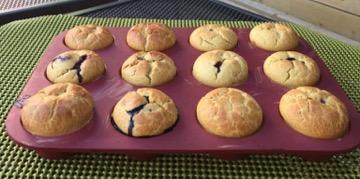 Gluten Free Wild Blueberry Kefir Muffins Picture
