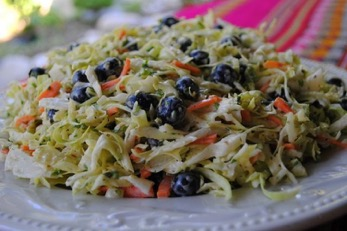 Red, White and Wild Blueberry Slaw Picture