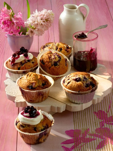 Wild Blueberry Cupcakes with  Cream Cheese and Wild Blueberry Icing Picture
